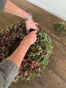 waxflower wreath3